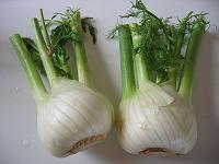 Gemüsefenchel